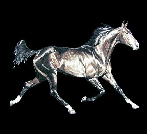 Thoroughbred Tattoos on Thoroughbred Tattoo Identifications To Include More Information